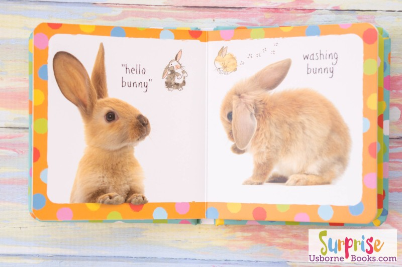 Little Book of Bunnies Usborne 2